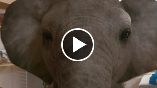 Watch Video - KP Nuts: The Nut Nut's Nut